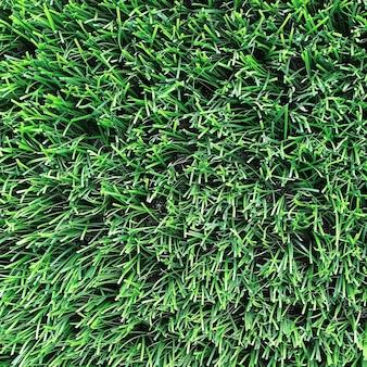 Hellgrüner natürlicher hintergrund. kunstrasen-nahaufnahme.