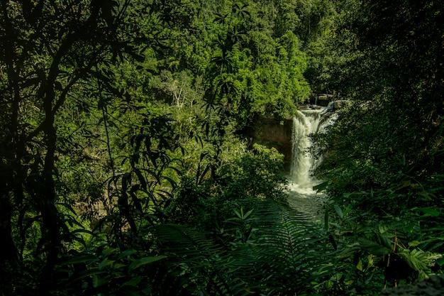 Heo suwat waterfall in nationalpark khao yai in thailand