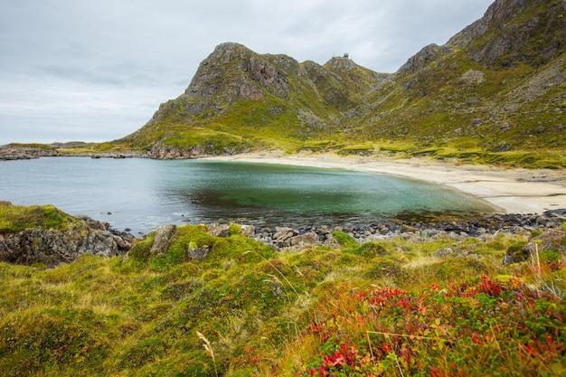 Herbst an einem strand auf den lofoten, nordnorwegen