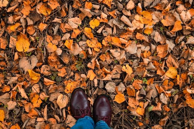 Herbst, blätter, beine und schuhe. beine stiefel auf dem herbstlaub. füße schuhe, die in natur gehen