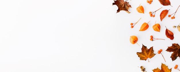 Herbst flach legen hintergrund auf weiß