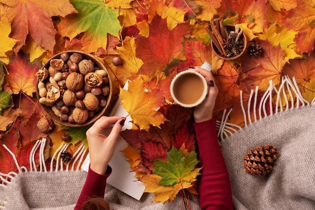 Herbst flach liegen. weißbuch, hölzerne schüssel nüsse, kaffeetasse, kegel, zimt über beige plaid und bunter blatthintergrund.