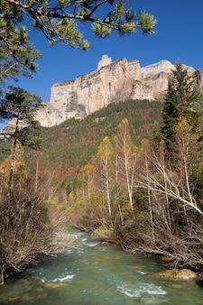Herbst fluss in ordesa nationalpark, pyrenäen, huesca, aragon, spanien