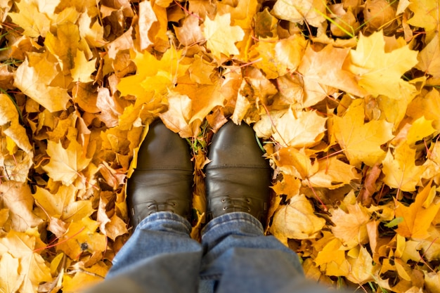 Herbst, herbst, blätter, beine und schuhe. konzeptionelles bild von beinen in stiefeln auf dem herbstlaub. fußschuhe in der natur spazieren