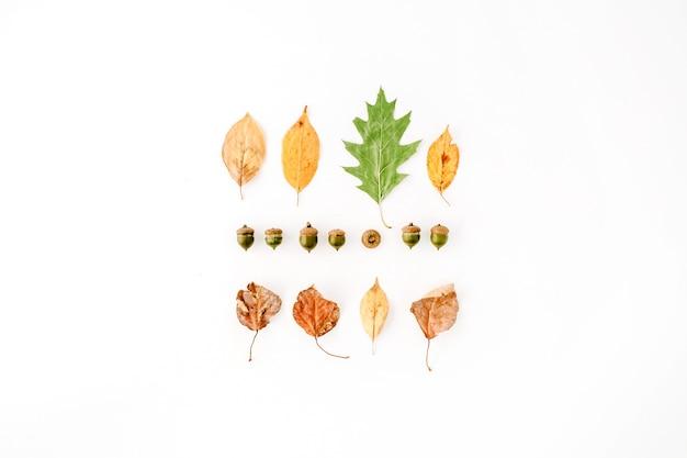 Herbst herbst flach liegen, draufsicht kreative anordnung.