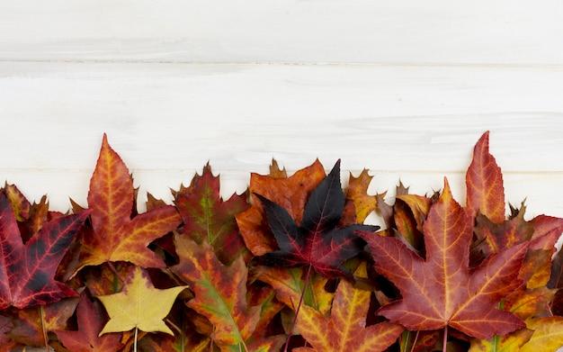 Herbst hintergrund. rahmen der bunten fallblätter auf weißem hölzernem schreibtisch.