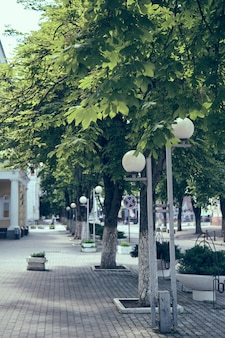 Herbst in den straßen der stadt mit bunten bäumen