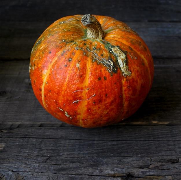 Herbst kürbis rustikal