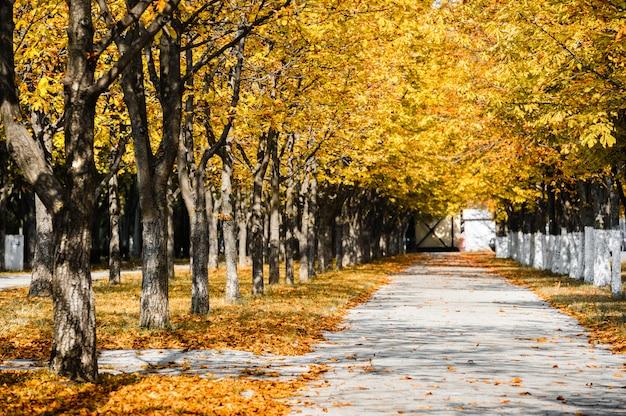 Herbst park