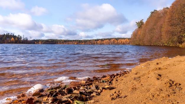 Herbst sonnige landschaft mit sandstrand am see und bunten bäumen.