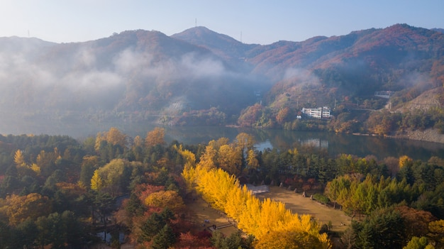 Herbst von nami island, seoul korea