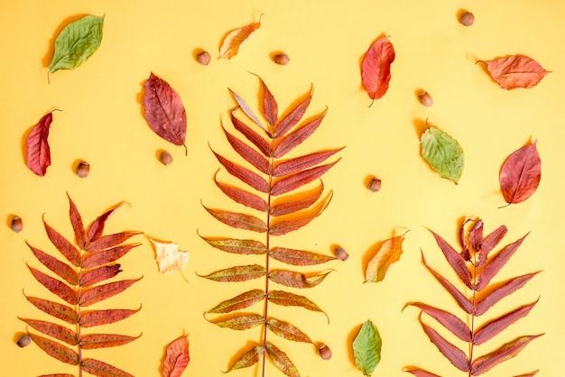 Herbst zusammensetzung. muster gemacht vom goldenen blatthintergrund des herbstes. flache lage, draufsicht, copyspace