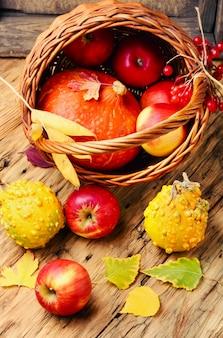 Herbstäpfel und kürbisse
