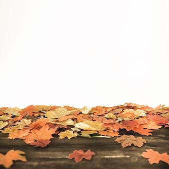 Herbstahornblätter, die auf hölzernem boden liegen