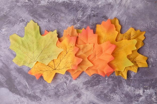 Herbstahornblätter lokalisiert auf weißem hintergrund, von oben nach unten