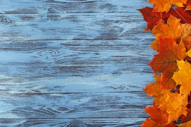 Herbstahornblatt auf blauem holztisch. herbsthintergrund mit kopierraum