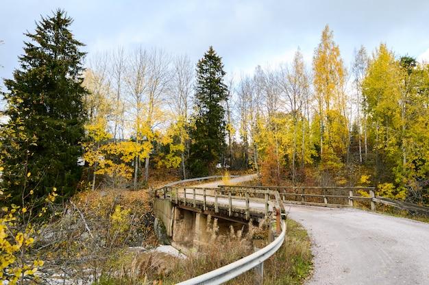 Herbstansicht des wanderwegs im leuchtfeuerhügelpark. helsinki, finnland.