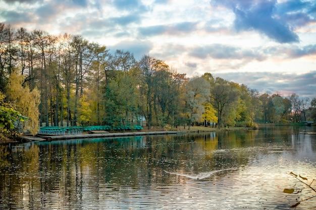 Herbstbäume spiegeln sich im wasser. bunter herbstmorgen im stadtpark mit bootsstation. bunter herbstsee. bunte landschaft frohe herbstsaison