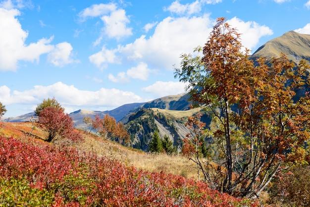 Herbstberglandschaft in den französischen alpen