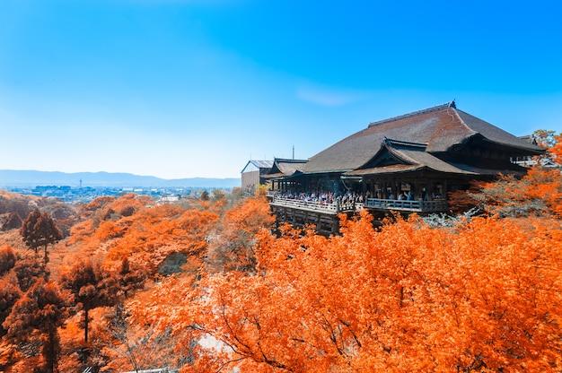 Herbstblätter am klaren wassertempel, japan