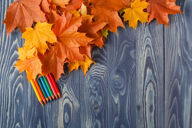 Herbstblätter auf einem blauen holztisch