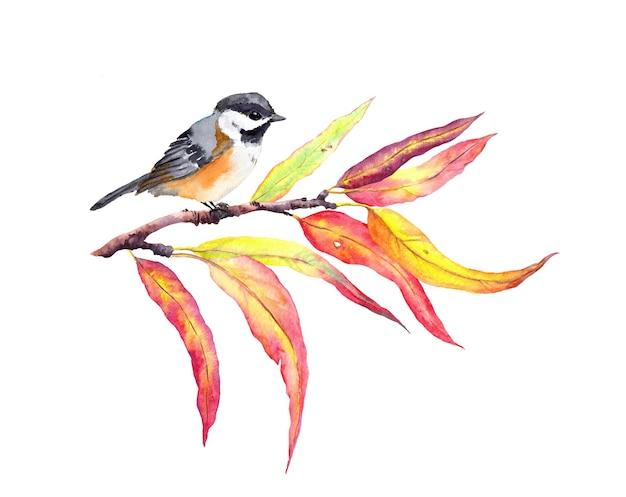 Herbstblätter auf zweig mit vogel. aquarell