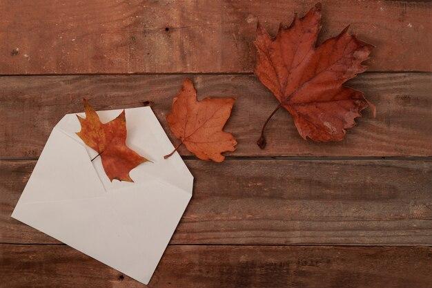 Herbstblätter kommen aus einem umschlag
