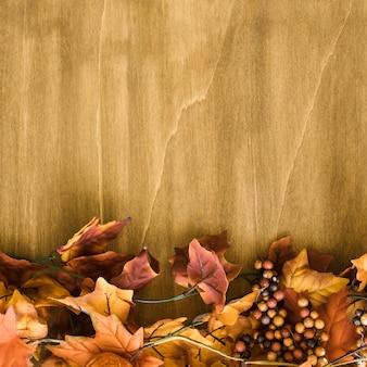 Herbstblätter und raum
