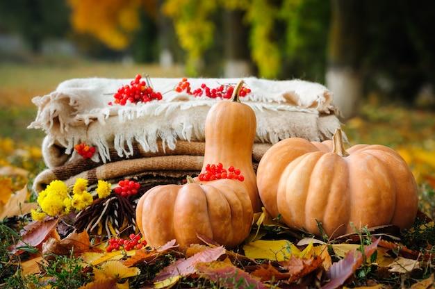 Herbstdanksagungsstillleben