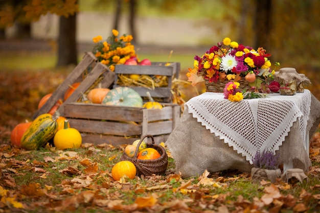 Herbstdekor im garten im rustikalen stil. kürbise, die in der holzkiste auf herbst liegen. herbstzeit. erntedank.