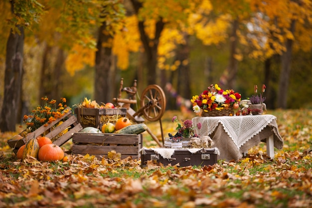 Herbstdekor im garten. kürbise, die in der holzkiste auf herbsthintergrund liegen.