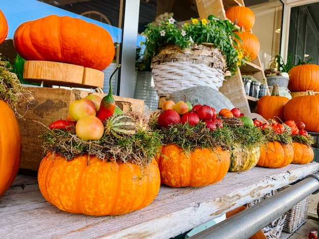 Herbstdekoration für halloween des erntedankfestes mit orange kürbisen und blumen