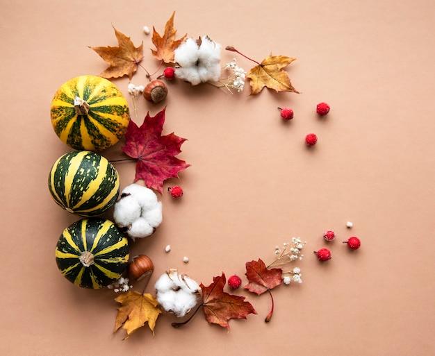 Herbstdekoration mit kürbissen und trockenen ahornblättern in form eines kreises
