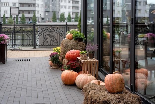 Herbstdekorationen in der nähe eines straßencafés am stadtdamm