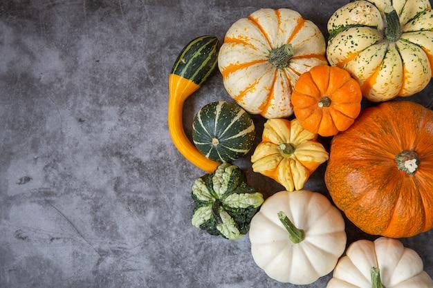 Herbsternte. dekorative kürbisse verschiedener sorten. draufsicht.