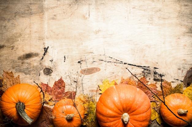 Herbsternte frischer kürbis mit blättern und zweigen auf hölzernem hintergrund