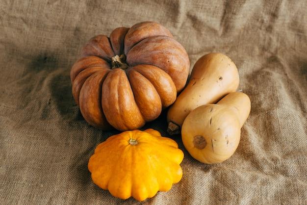 Herbsternte. kürbisse und kürbis auf sackleinen.