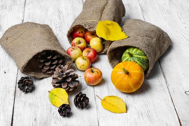 Herbsternte von obst und gemüse
