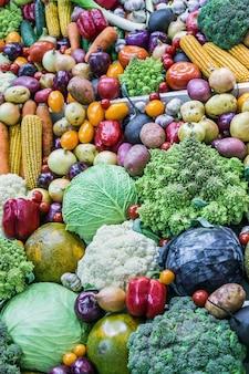 Herbsternte von verschiedenen gemüse- und wurzelfrüchten Premium Fotos