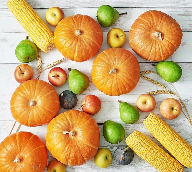 Herbsterntekürbis. herbst ernten gemüse und obst. kürbisse, äpfel, birnen, mais auf dem tisch. thanksgiving-tisch. halloween oder saisonale herbst. grußkarte. herbstküche.