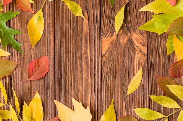Herbstfahne mit buntem baum verlässt auf braunem holz