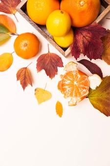 Herbstfarbene blätter und zitrusfrüchte. zitronen, mandarinen, grapefruits in einem holzteller auf einem leichten deck