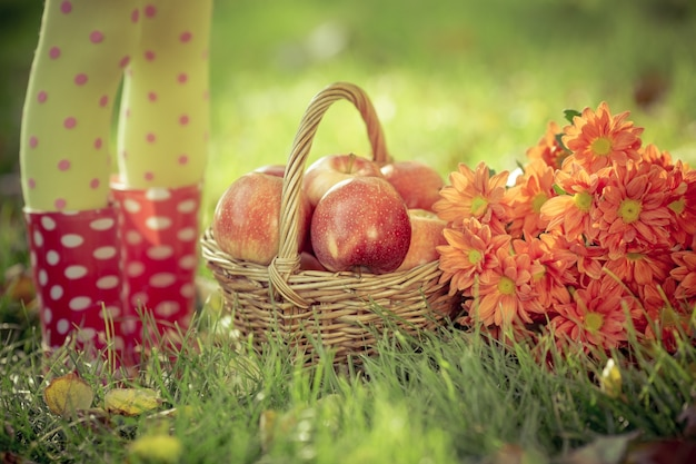 Herbstfrüchte im freien