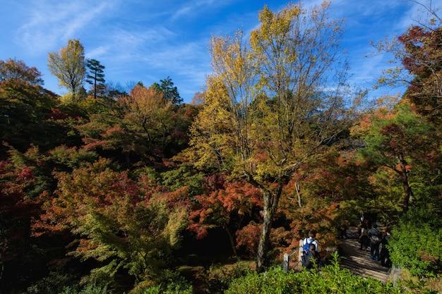 Herbstgarten im tofukuji-tempel, kyoto