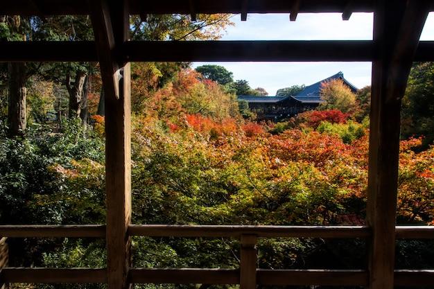 Herbstgarten im tofukuji-tempel