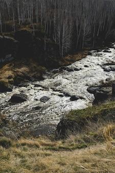 Herbstgebirgsfluss-stromlandschaft. gebirgsfluss-herbstansicht. herbst gebirgsflusspanorama.