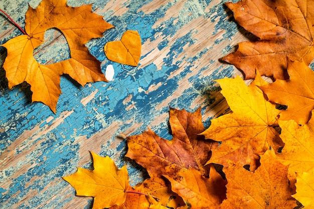 Herbstgelb verlässt auf dem hölzernen cyan-blauen schreibtisch des schmutzes
