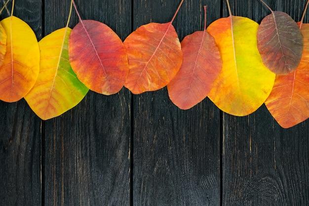 Herbstgelbblätter auf einer schwarzen kräftigen schablone für design