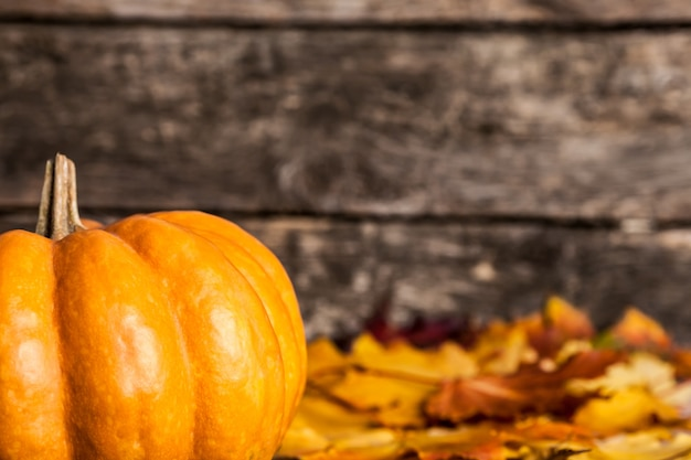 Herbstgrenze aus kürbis- und ahornblättern auf holzuntergrund