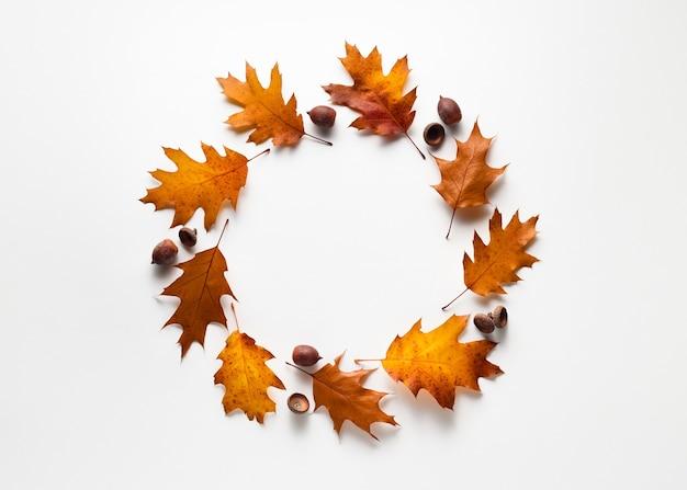 Herbsthintergrund mit einem runden dekorativen rahmen aus eichenblättern und eicheln. platz auf weiß kopieren